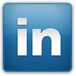 LinkedIn, The Professional Network